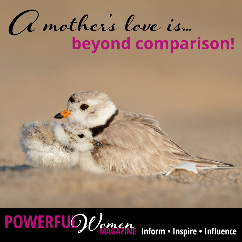 A mother's love is beyond comparison